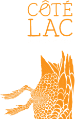logo-seul-footer